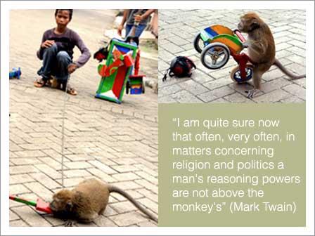 monyet.jpg